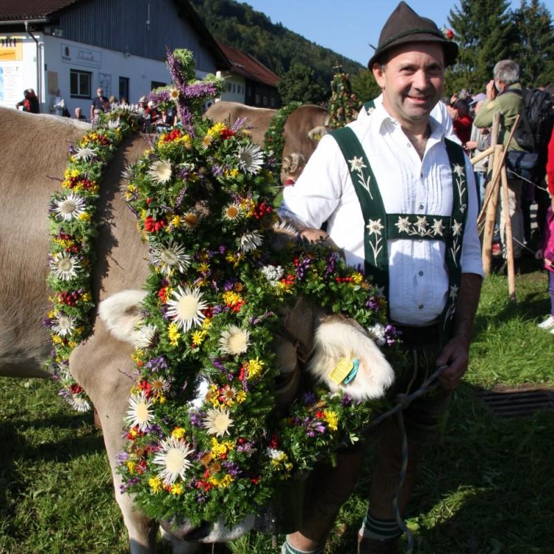 Viehscheid Thalkirchdorf